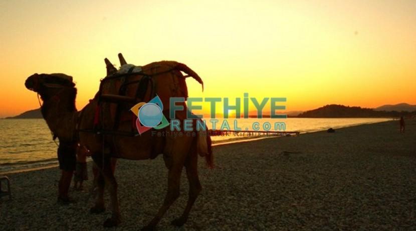 Kiralık Yazlık Daire Fethiye 38